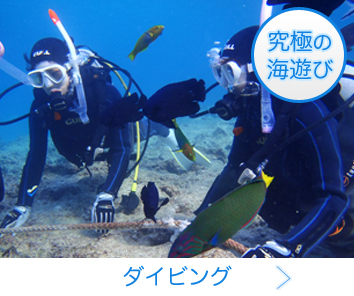 究極の海遊び!ダイビング